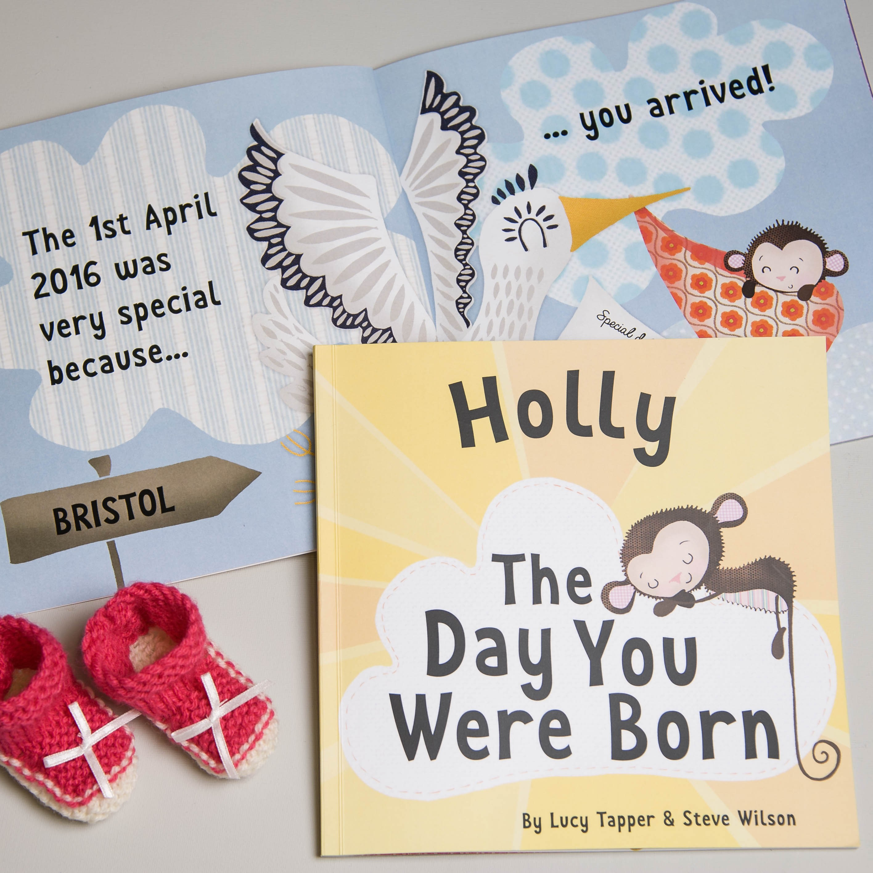 """""""The Day You Were Born"""" Baby Book"""